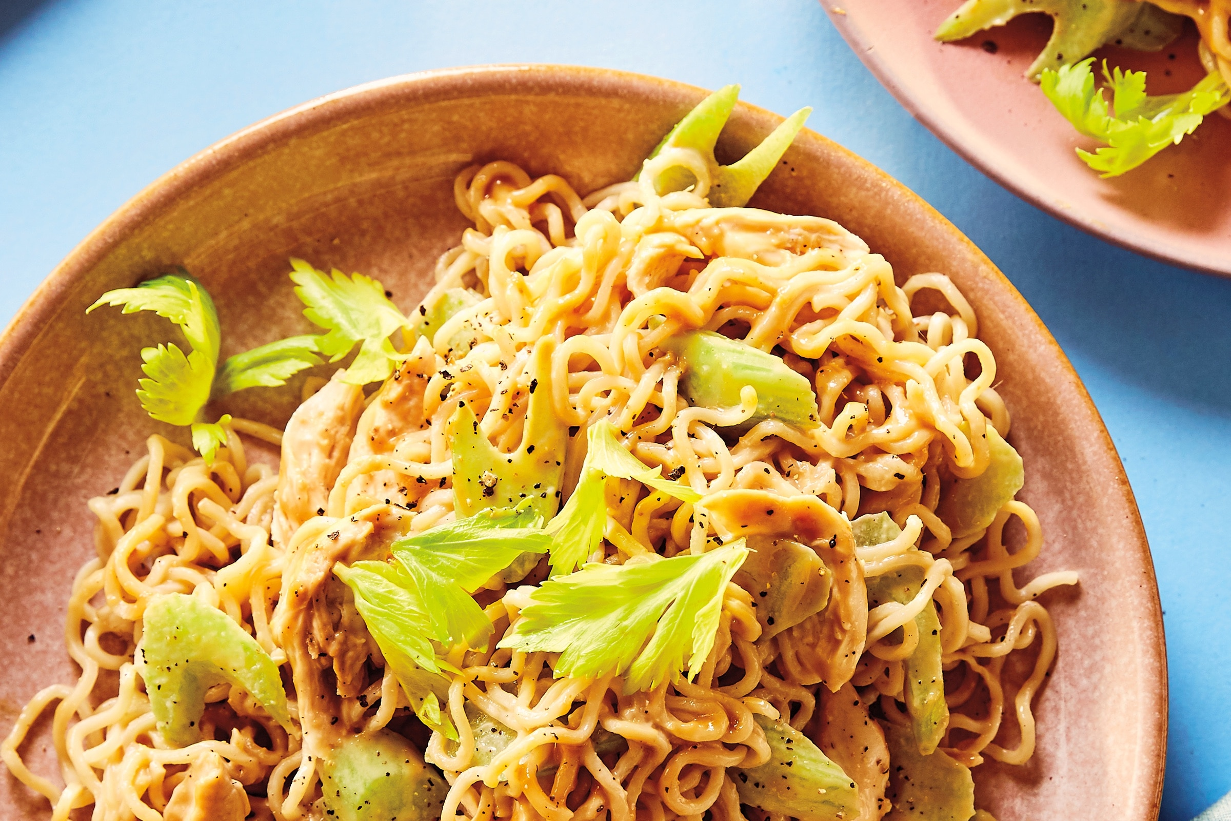 plate of noodles with chicken and celery