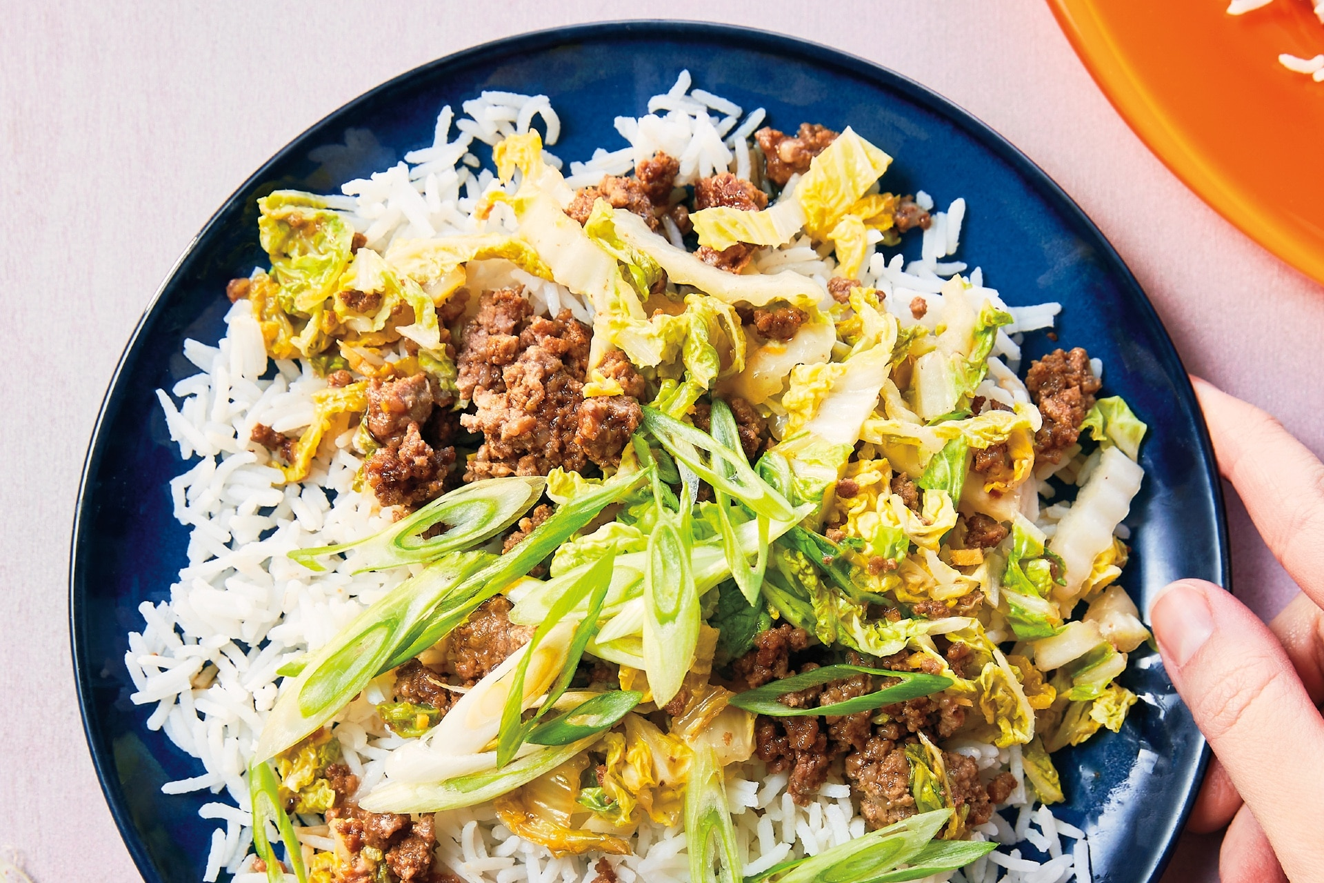 plate of ground beer and shredded cabbage over rice