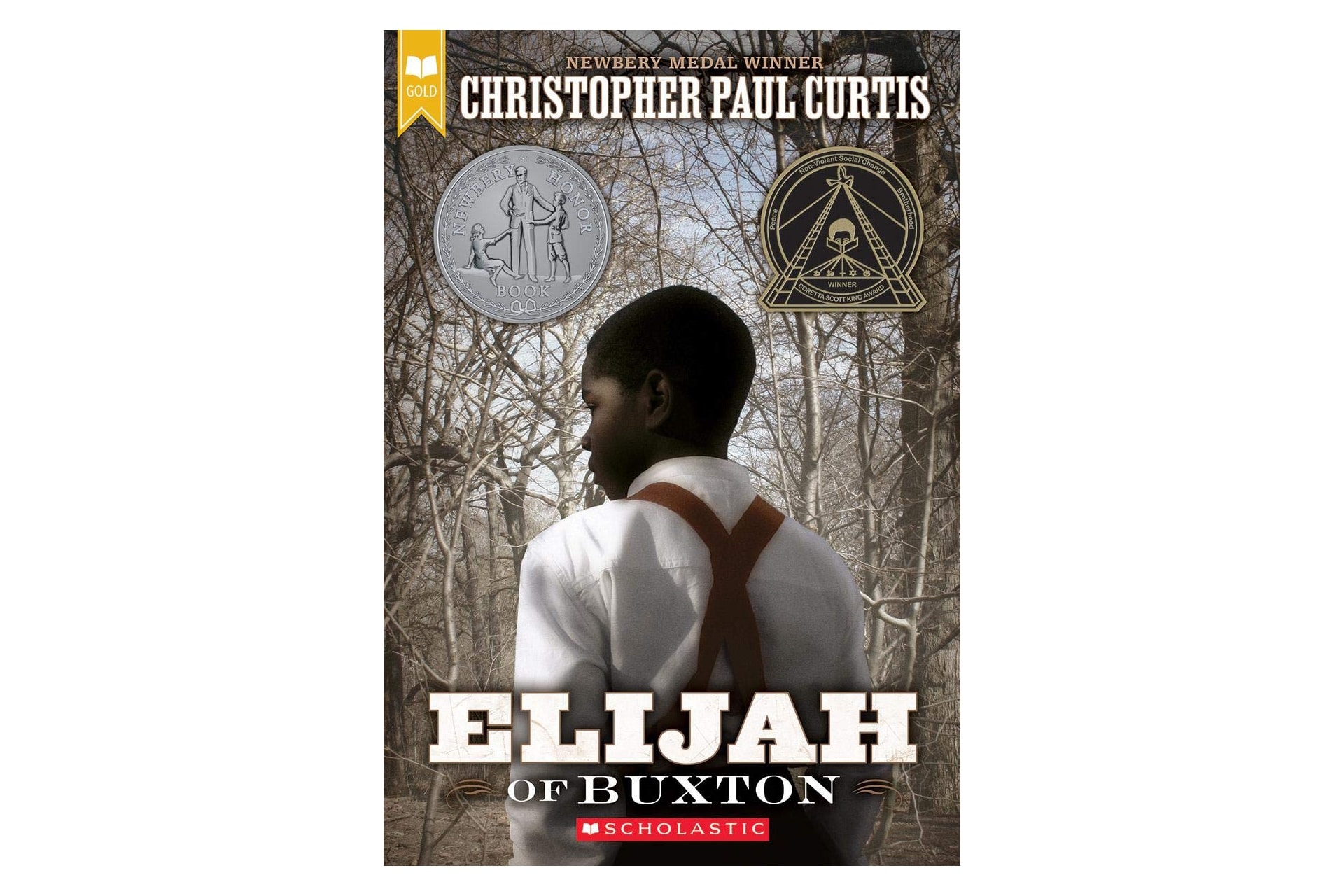 Book cover of a Black boy in the woods, the title says Elijah of Buxton